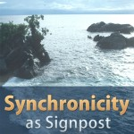 Synchronicity as Signpost Cover Flat 900 (1)